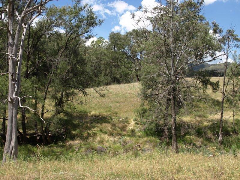Lot 1 Halls Creek Road, Halls Creek, NSW 2346