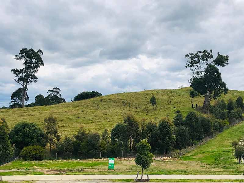 Lot 661, 39 Olive Hill Drive, Cobbitty, NSW 2570