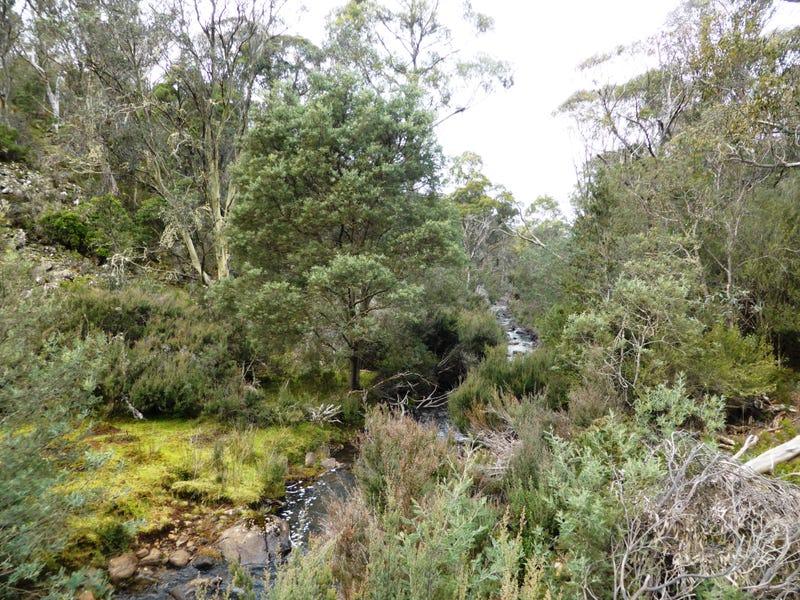 1734 Fourteen Mile Road, Bronte Park