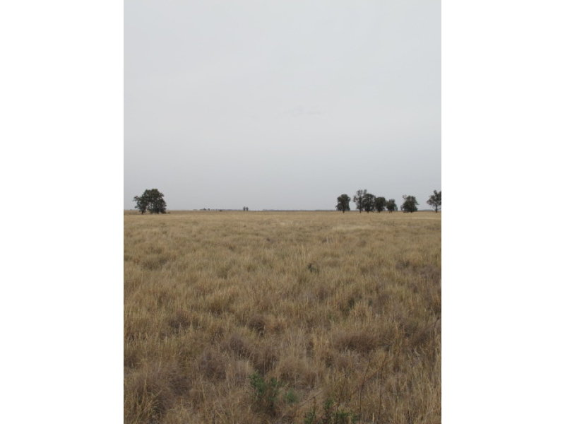 750 Wimmera Highway, Murtoa, Vic 3390