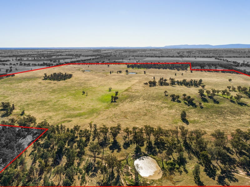 54 Silo Road, Young, NSW 2594