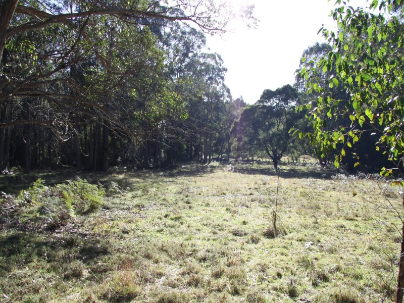 Lot 6, 109 Veldens Road, Toorloo Arm, Vic 3909