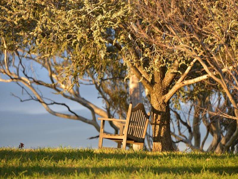 37 Curtin Road, Borenore, NSW 2800