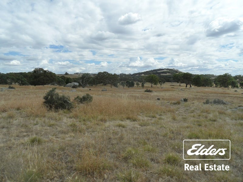 Lot 6 (847) Trial Hill Road, Pewsey Vale, SA 5351