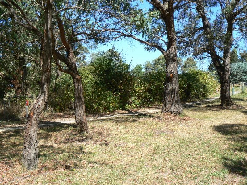 2317 Birregurra-Forrest Road, Forrest, Vic 3236