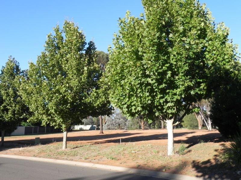 Lot 11 Sandpiper Drive, Murray Downs, NSW 2734