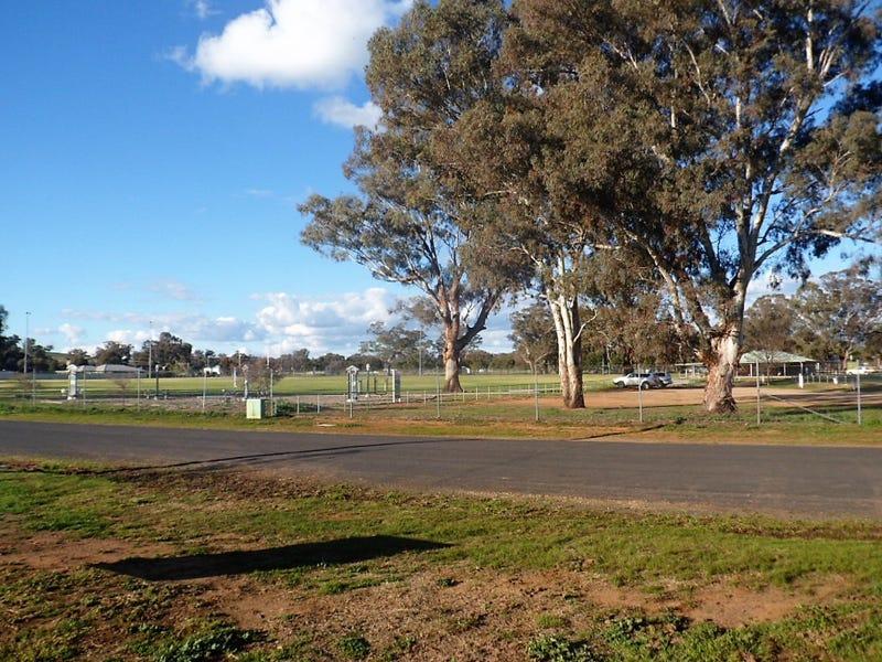 95 Tilga St, Canowindra, NSW 2804