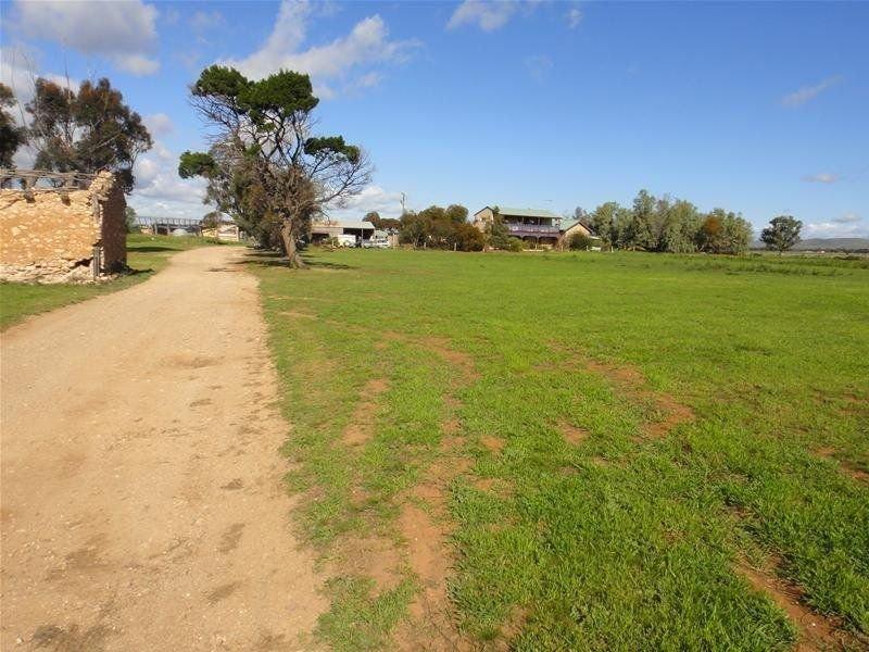 1057 Pine Hut Road, Sedan, SA 5353