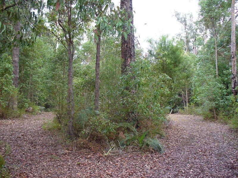 Lot 7 Karri Lane, Quinninup, WA 6258