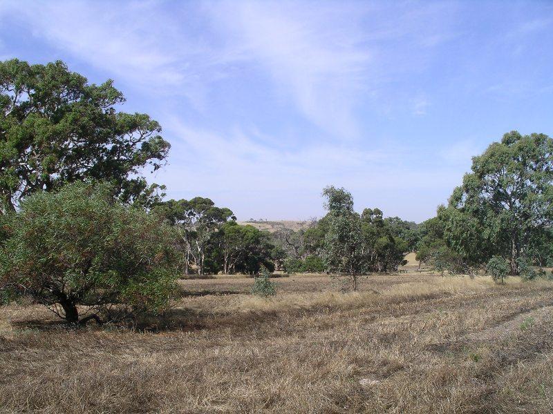 14 Gould Road, Currency Creek, SA 5214