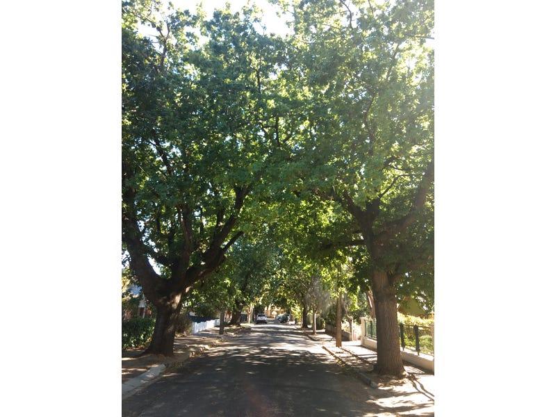 7 AVONDALE STREET, Clarence Park