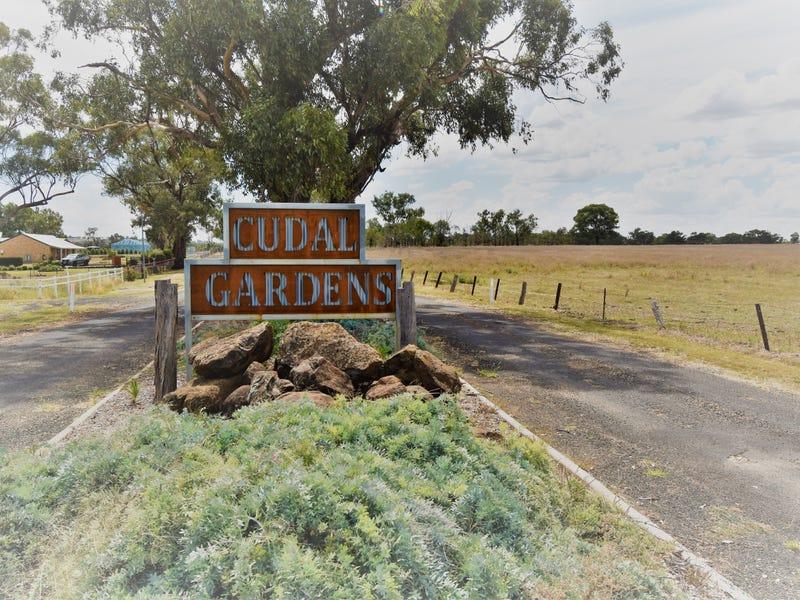 Lot 8, 25 Rodda Drive, Cudal, NSW 2864