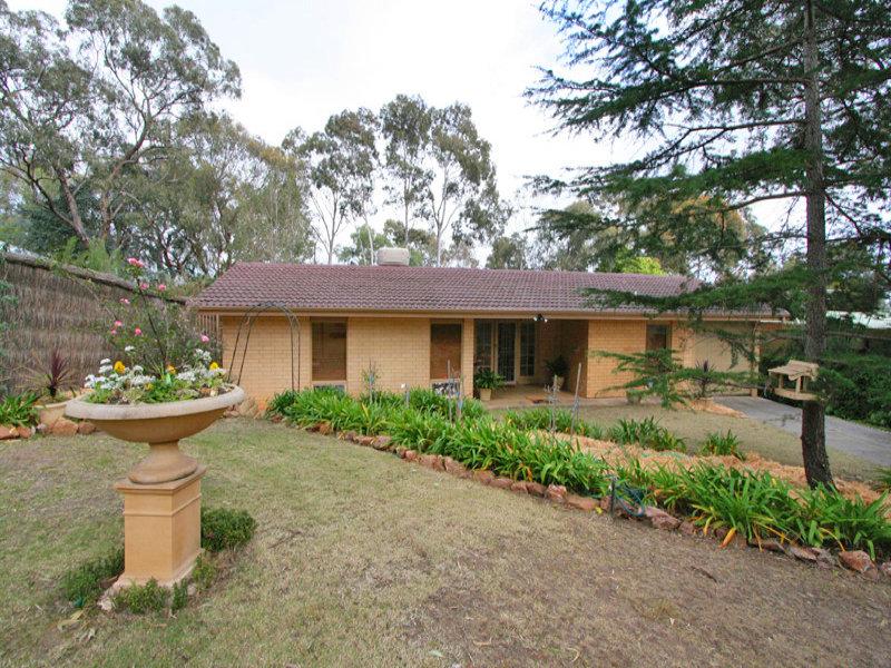 59 Braemar Road, Torrens Park, SA 5062
