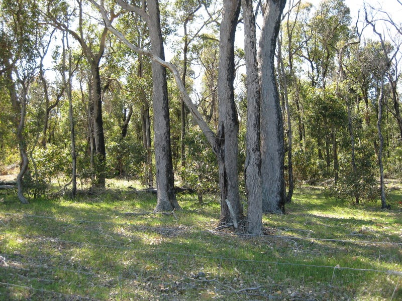 Lot 151 Pickles Road, Narrikup, WA 6326