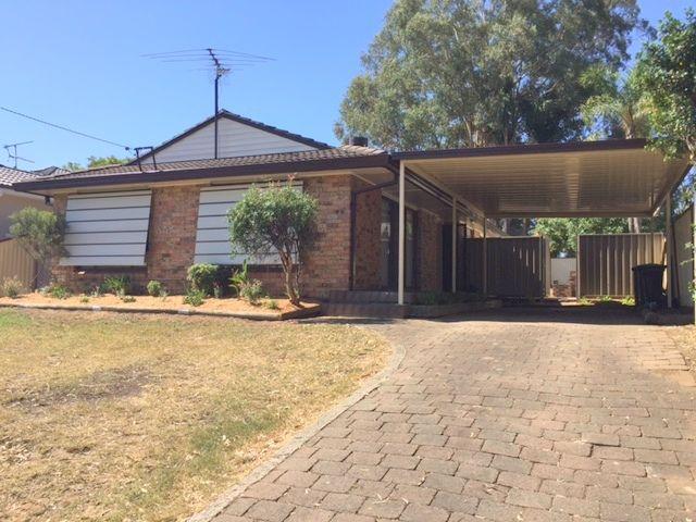 3 Bligh Avenue, Camden South, NSW 2570