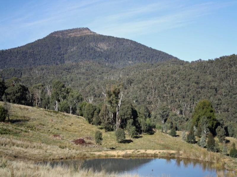 Lot 8 Wild Dog Road, Merrijig, Vic 3723