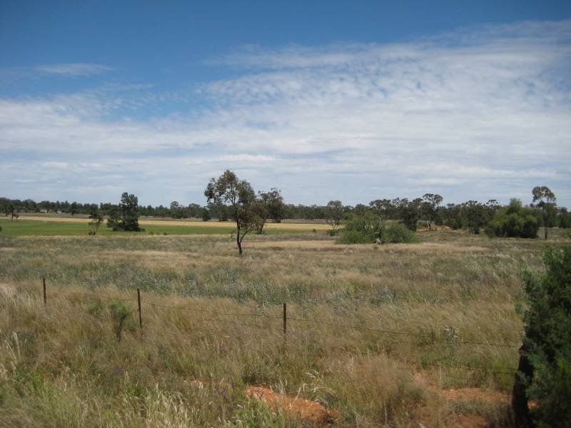 1 Willis and Browns, Condobolin, NSW 2877