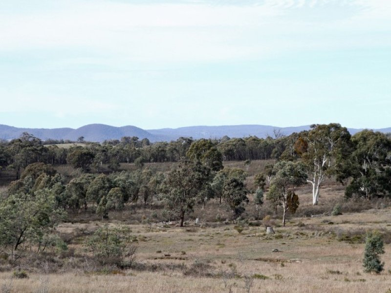 202 & 203, Dicks Creek Road, Murrumbateman, NSW 2582