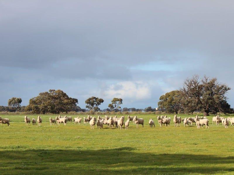 1 Lashbrooks Road, Barham, NSW 2732