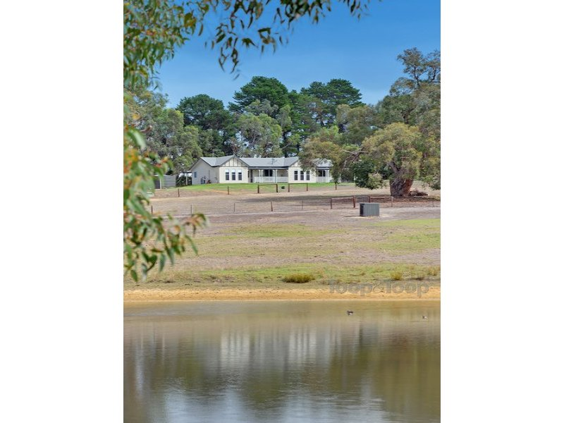 205 Todd Road, Jupiter Creek, SA 5153