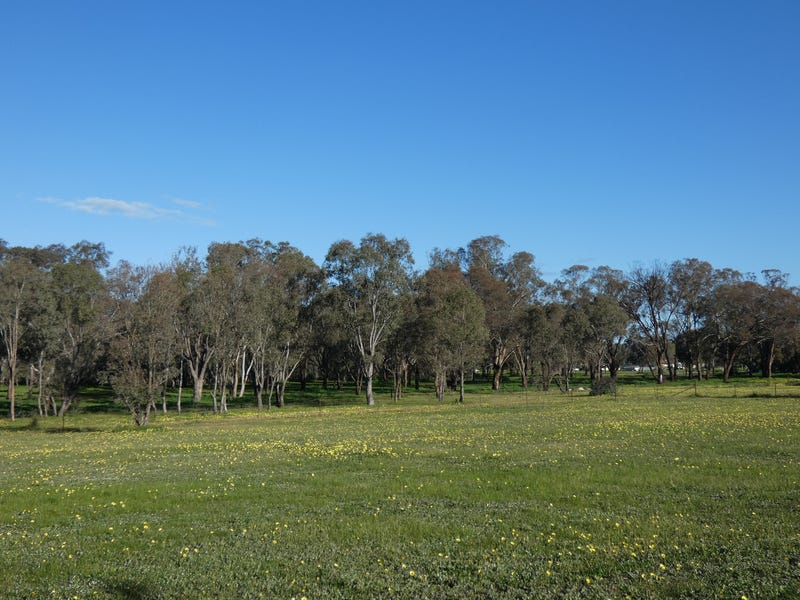 Lot 10, Cherry Tree, Close, Bendick Murrell, NSW 2803