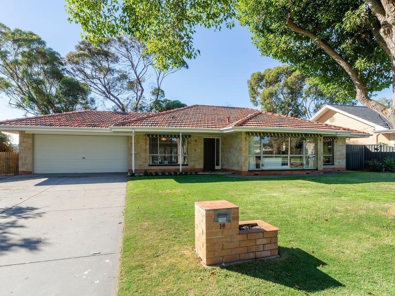 14 Old Drive, Novar Gardens, SA 5040