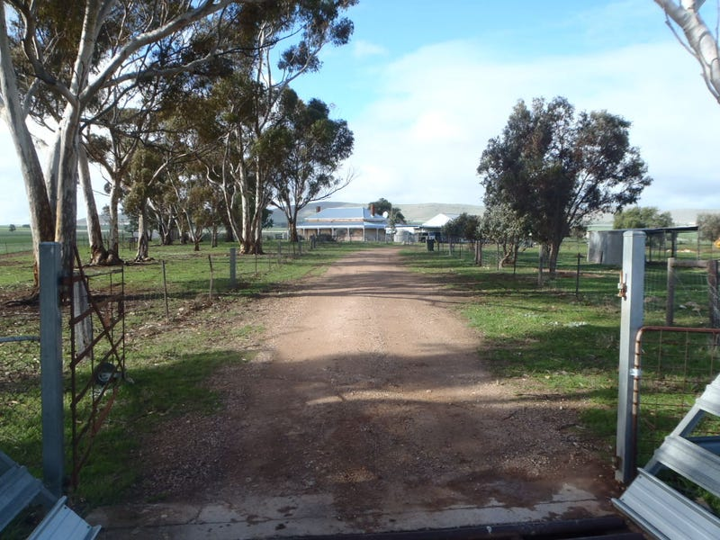 37 Bonds Road, Gladstone, SA 5473
