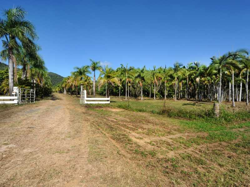 1069 Conway Road, Conway Beach, Qld 4800