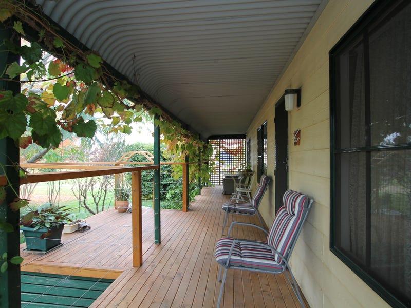 47 Debenham Street, Blandford, NSW 2338