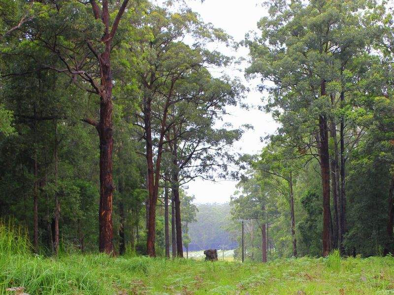 Lot 1 Roseneath Road, Herons Creek, NSW 2443