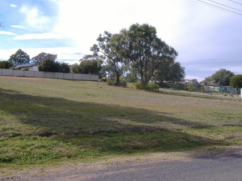 22 Learmonth Street, Willow Tree, NSW 2339
