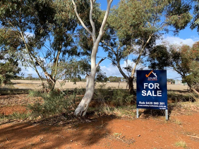 82 The Cattle Track Road, Crystal Brook, SA 5523