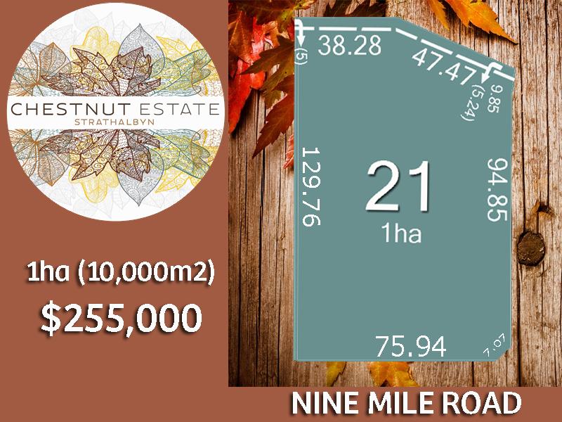 Lot 21 Nine Mile Road, Strathalbyn, SA 5255