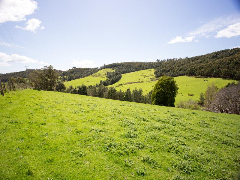163 Turkey Farm Road, Glengarry, Tas 7275