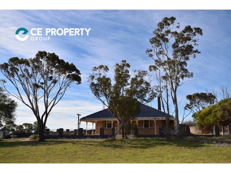 534 Reedy Creek Road, Murray Bridge