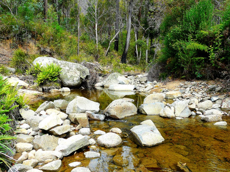 .289 Davis Gully Road, Four Mile Creek, Tas 7215