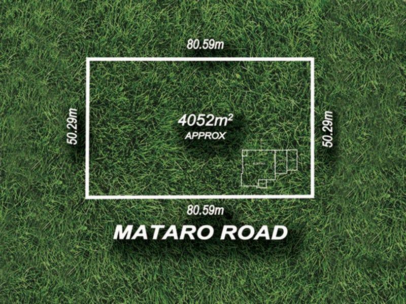19 Mataro Road, Hope Valley, SA 5090