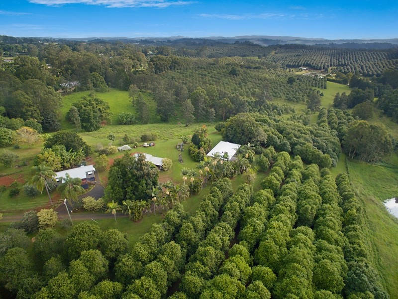 1555 Dunoon Road, Dunoon, NSW 2480