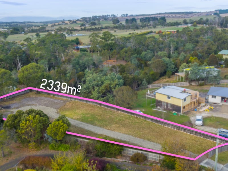 9 Bridview Place, Bridport, Tas 7262