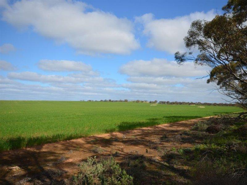 CA 40A Danyo North Road, Murrayville, Vic 3512