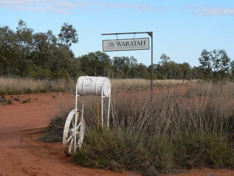 . Waratah, Bourke, NSW 2840