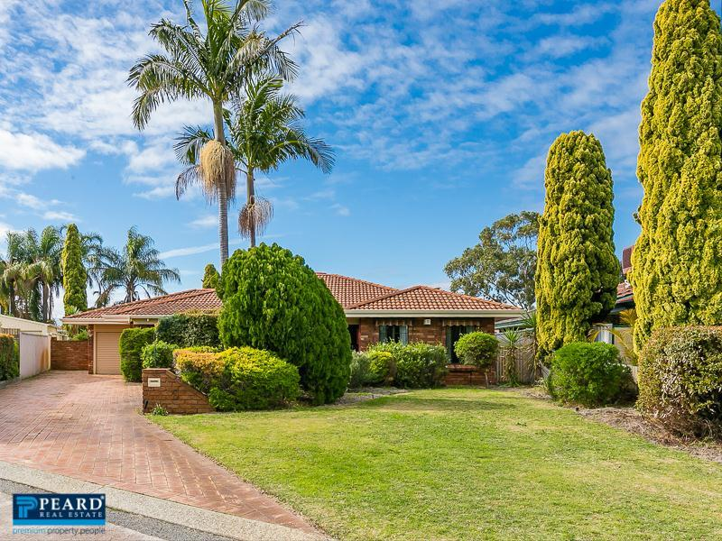 6 Mallee Place, Morley, WA 6062