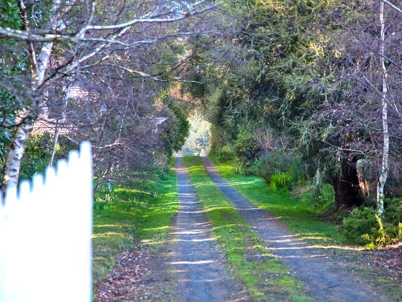 243 Lalla Road, Lalla, Tas 7267
