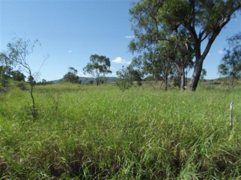 Lot 52 Pelican Creek Road, Collinsville, Qld 4804
