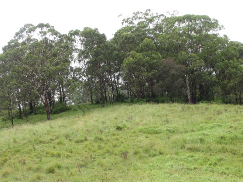Lot 21 Green Pigeon Road, Horseshoe Creek, NSW 2474