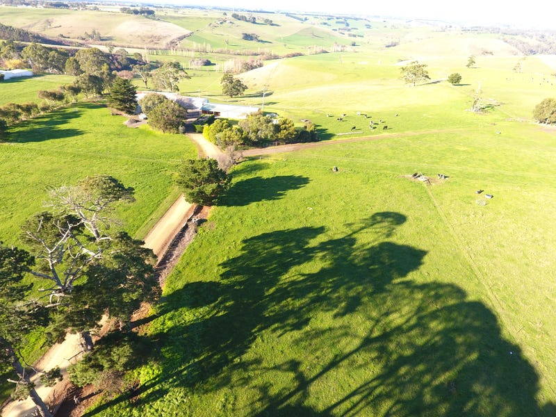 89 Cobden Scotts Creek Road, Cobden, Vic 3266