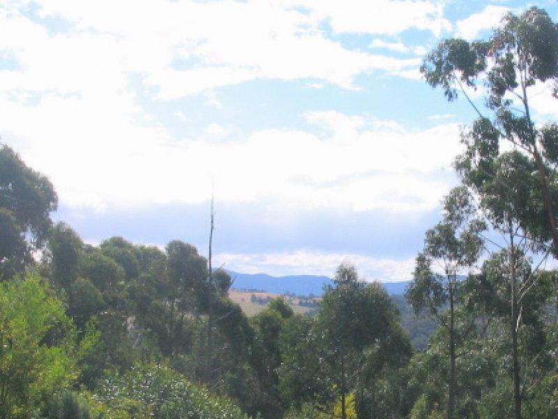 L842 Kiaka Road, Nethercote, NSW 2549