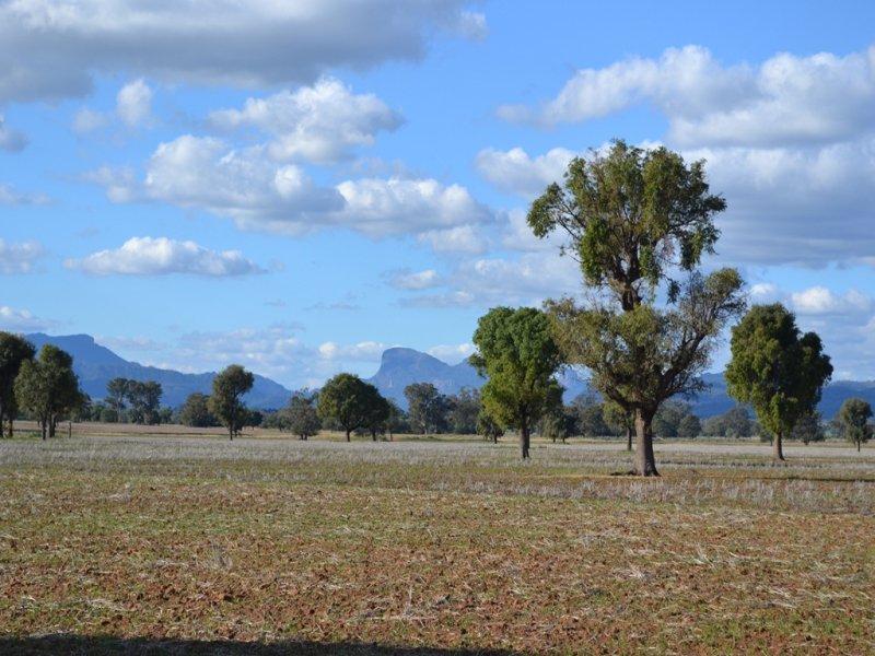 CLEARVALE & YOULBUNG, Tooraweenah, NSW 2831