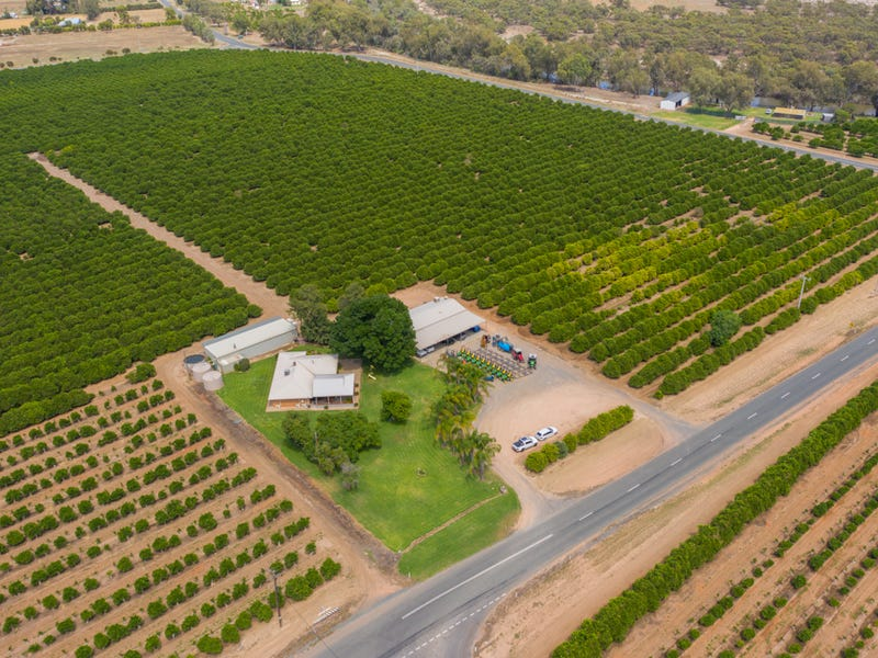 310 Delta Road, Curlwaa, NSW 2648
