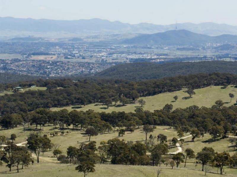 517 Wanna Wanna Rd, Carwoola, NSW 2620